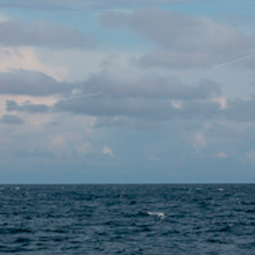 Una cometa eólica puede ser el futuro de la eólica marina
