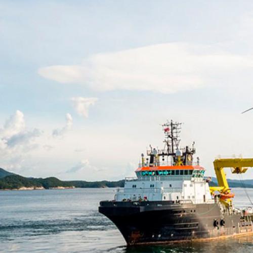 La energía eólica offshore y la industria naval pueden reforzarse mutuamente