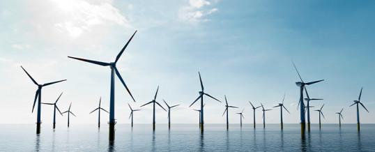 Se constituye un observatorio para analizar el impacto de la eólica marina